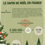 Sapin de Noël en quelques chiffres